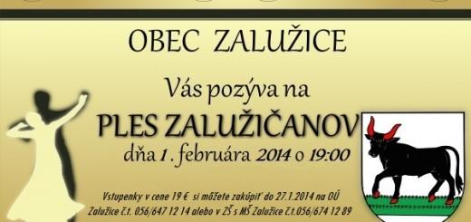 pozvanka_ples_2014
