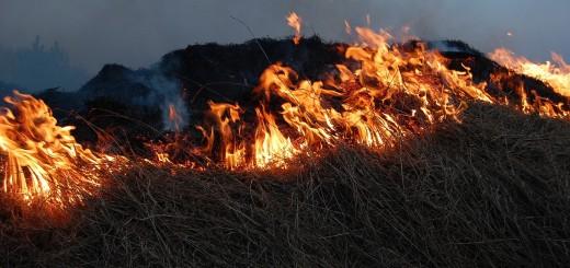 fire-785654_1280